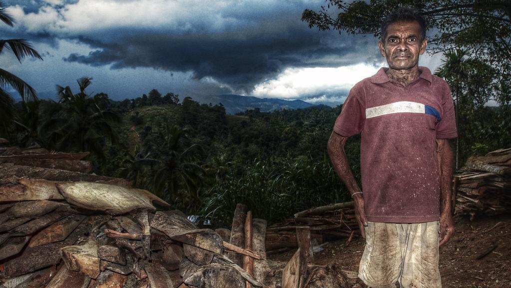 Lumber Guy, Sri Lanka